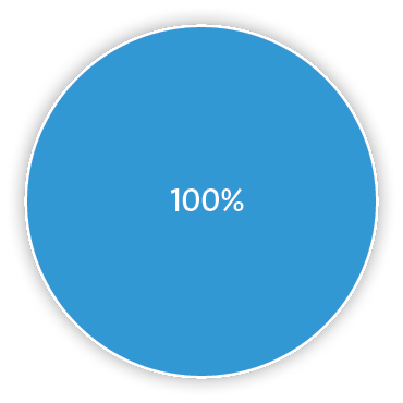 Pie chart representing 100% nitrous oxide